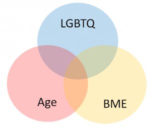 age, BME and LGBTQ venn diagram