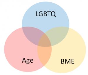 age, BME and LGBTQ venn diagram